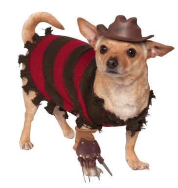 dog costumes 4